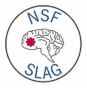 NSF SLAG